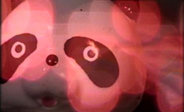 Panda Panda Panda Video